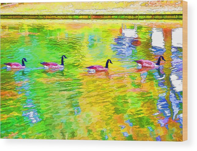 Canadian Geese Wood Print featuring the painting Four Canadian Geese In The Water 1 by Jeelan Clark