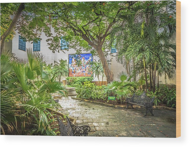 Havana Wood Print featuring the photograph Garden In The Square by Bill Howard
