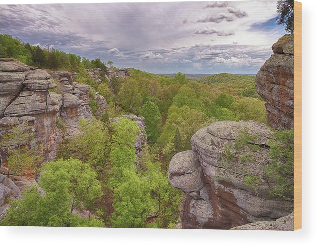 Garden Of The Gods Wood Print featuring the photograph Garden Of The Gods by Susan Rissi Tregoning