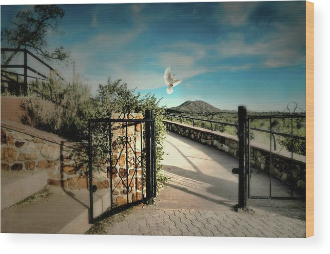 Santa Fe New Mexico Wood Print featuring the photograph Gate To The Martyrs by Diana Angstadt