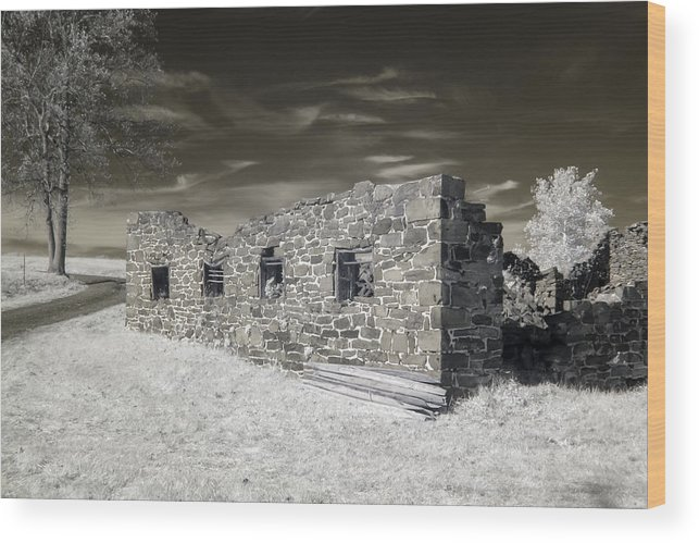 Architecture Wood Print featuring the photograph Gettysburg - Rose Farm Ruins by Liza Eckardt