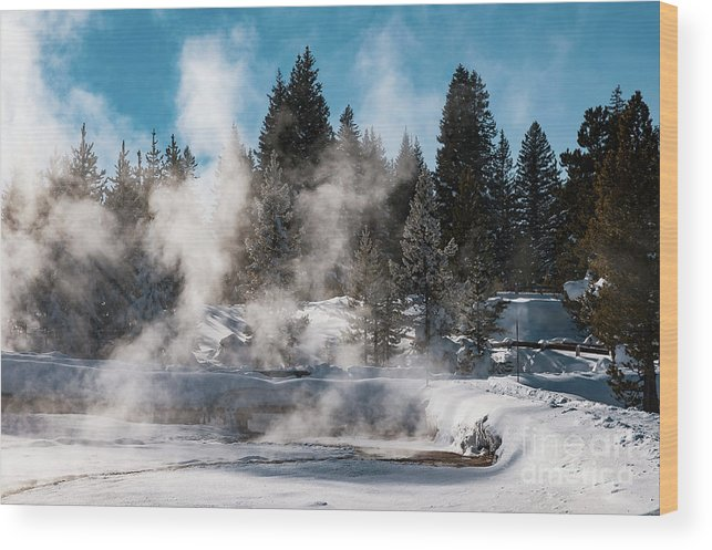Yellowstone National Park Wood Print featuring the photograph Geyser Trail by Bob Phillips