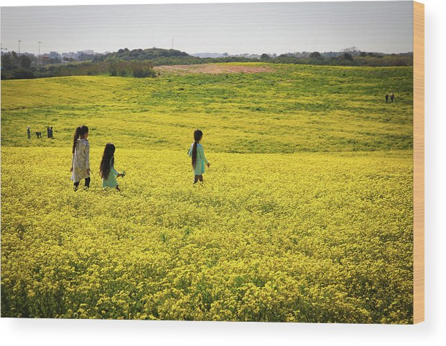 Girls Wood Print featuring the photograph Girls Walking In The Field by Gal Shoval mashiach