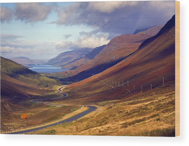 Scotland Wood Print featuring the photograph Glen Docharty And Loch Maree by John McKinlay