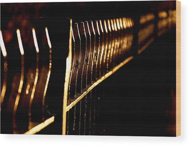 Jez C Self Wood Print featuring the photograph Golden Fence by Jez C Self