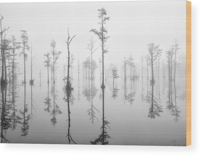 Goodale State Park Wood Print featuring the photograph Goodale 13 by Jim Dollar