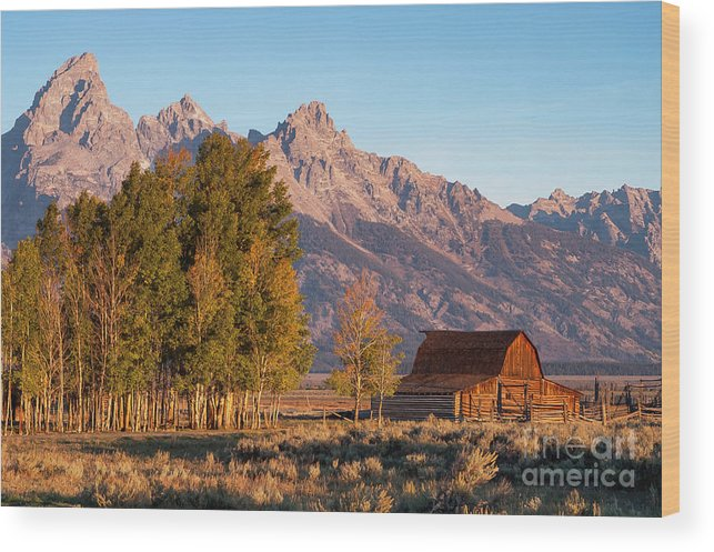 Jackson Hole Wood Print featuring the photograph Grand Teton Mountain View by Bob Phillips