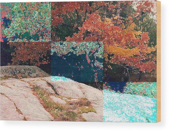 Landscape Wood Print featuring the photograph Granite Outcrop And Fall Leaves Aep3 by Lyle Crump
