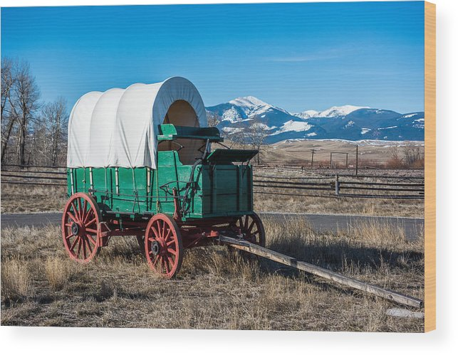 Green Covered Wagon Wood Print featuring the photograph Green Covered Wagon by Paul Freidlund