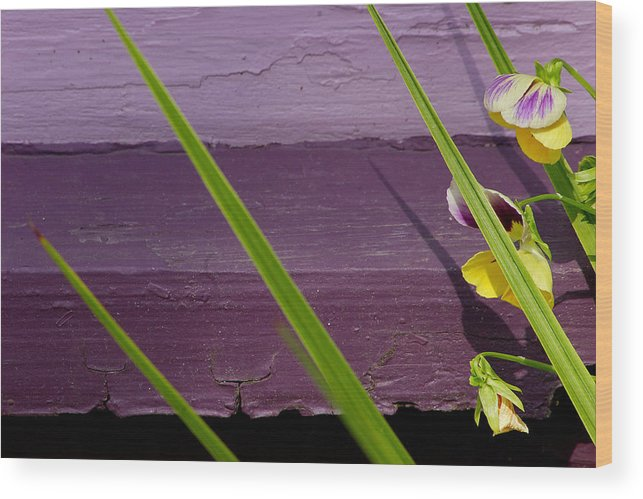 Abstract Wood Print featuring the photograph Green On Purple 6 by Art Ferrier