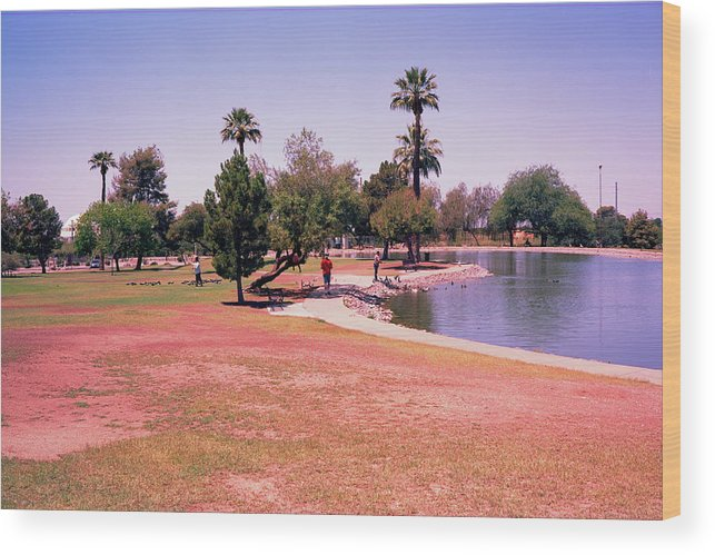 Grenada Park In Phoenix Az Attracts Ducks And Citizens To It Small Lake. Wood Print featuring the photograph Grenada2 by George Arthur Lareau