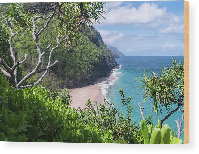 Na Pali Coast Wood Print featuring the photograph Hanakapiai Beach by Brian Harig