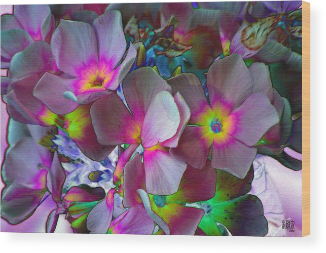 Flowers Wood Print featuring the photograph Hanging Color by Michele Caporaso
