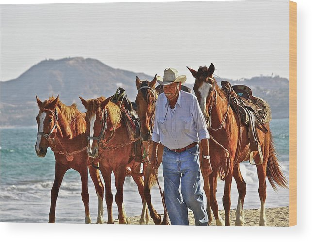 Animals Wood Print featuring the photograph Hardworking Man by Diana Hatcher