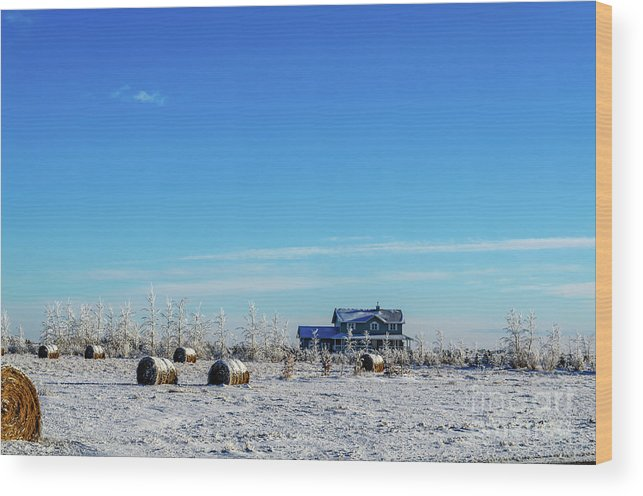 Wood Print featuring the photograph Haystacks In The Snow Before The Sunset Date by Viktor Birkus