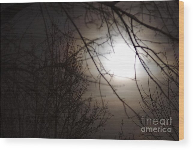 Moon Wood Print featuring the photograph Hazy Moon Through The Trees by Brandi Christon