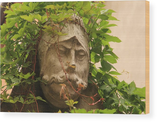 Venice Wood Print featuring the photograph Head With Vines by Michael Henderson