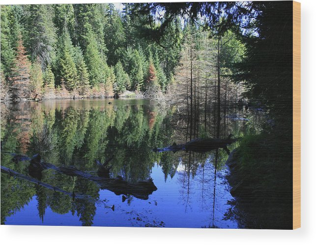Landscape Wood Print featuring the photograph Heaven And Heaven by Alan Rutherford