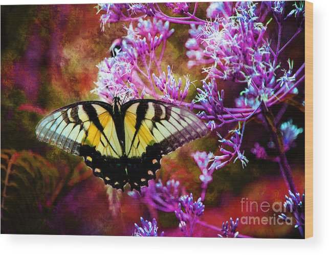 Eastern Tiger Swallowtail Wood Print featuring the photograph Here Today Gone Tomorrow by Mike Eingle