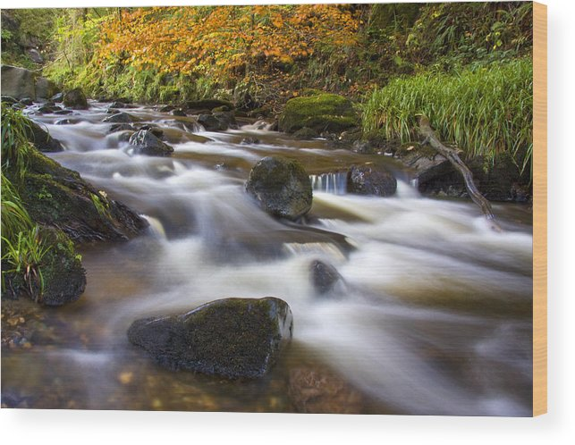 Scotland Wood Print featuring the photograph Highland River In Autumn by John McKinlay