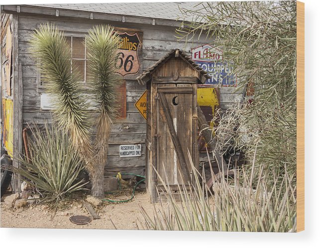 Arizona Wood Print featuring the photograph Historic Route 66 - Outhouse 2 by Liza Eckardt