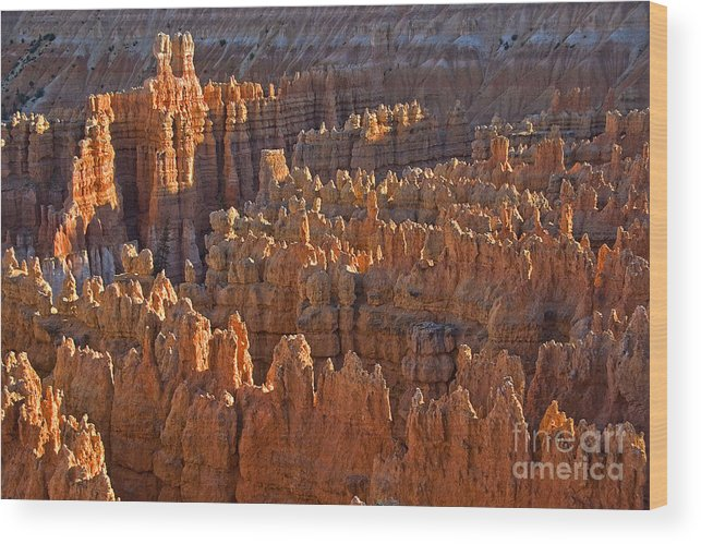 Hoodoos Wood Print featuring the photograph Hoodoos At Black Birch Canyon by Neil Doren