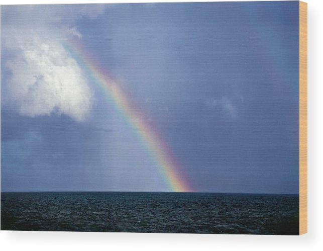 Landscape Wood Print featuring the photograph Horizontal Number 13 by Sandra Gottlieb