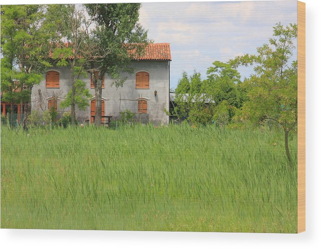 Wood Print featuring the photograph House On Torcello In Venice by Michael Henderson