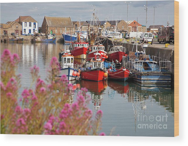 Harbor Wood Print featuring the photograph Howth Harbour by Gabriela Insuratelu