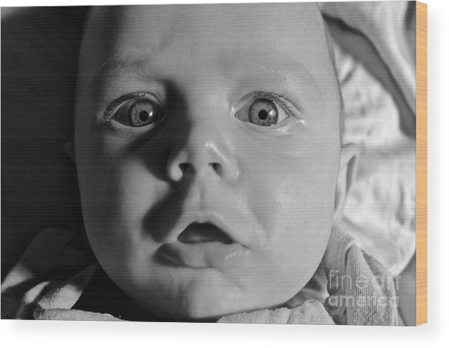 Baby Wood Print featuring the photograph I See You by Peter Jamieson