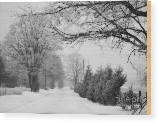 Country Wood Print featuring the photograph In The Country by Cathy Beharriell