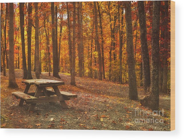 Fall Wood Print featuring the photograph In The Park by Kathy Jennings