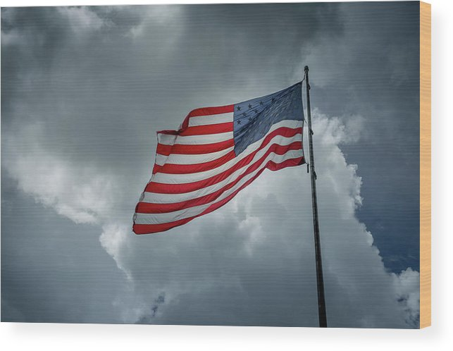 Usa Wood Print featuring the photograph In The Sky by Marco Zottich
