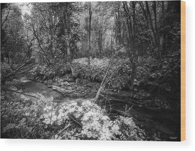 Kvennan Wood Print featuring the digital art Infra Creek by Mikael Jenei