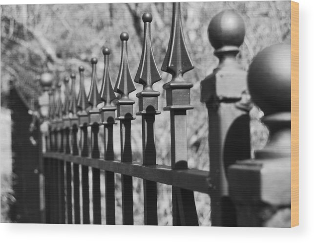 Wood Print featuring the photograph Iron Gate by Jessica Roth