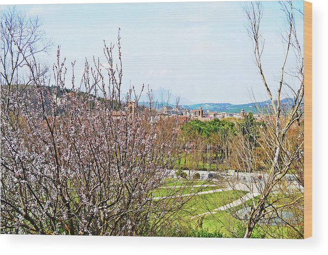 Italy Wood Print featuring the photograph Italy In Spring by Tinto Designs