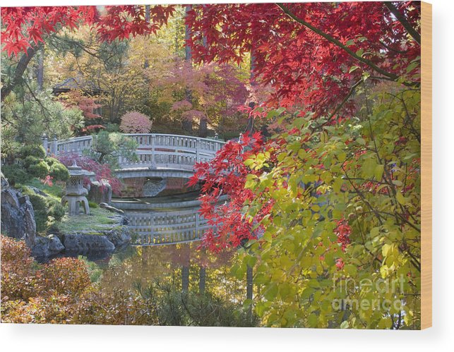 Gardens Wood Print featuring the photograph Japanese Gardens by Idaho Scenic Images Linda Lantzy