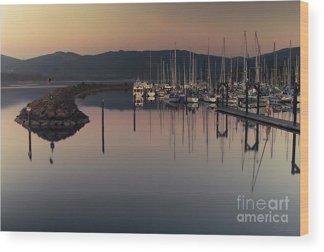 Marina Wood Print featuring the photograph John Wayne Marina by Karen Goodwin