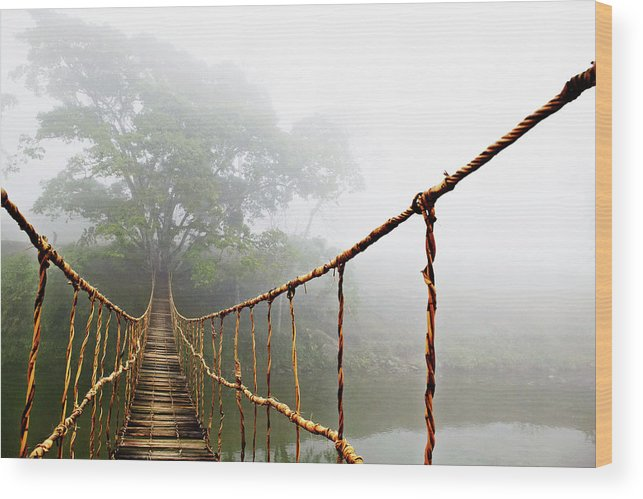 Rope Bridge Wood Print featuring the photograph Jungle Journey by Skip Nall