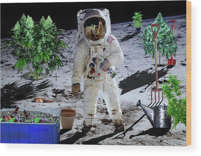 Moon Wood Print featuring the digital art Just Call Me Buzz by John Scariano