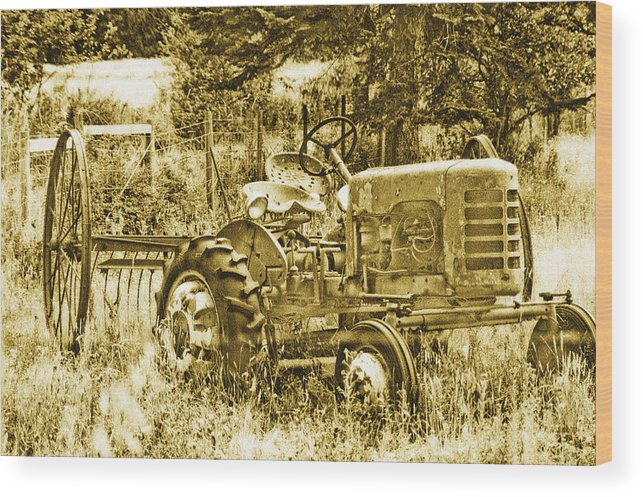 Vintage Wood Print featuring the photograph Just For Lookin' At... Now by Linda McRae