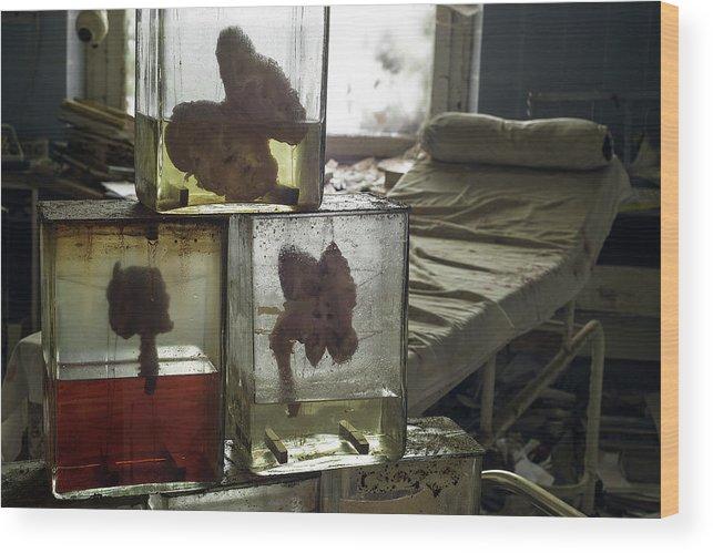 Urbex Wood Print featuring the photograph Kidneys by Marissa Mancini