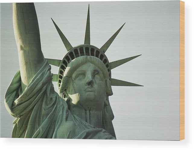 Statue Of Liberty Wood Print featuring the photograph Lady Liberty by Lucia Vicari