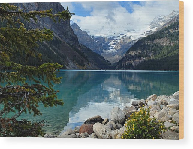 Lake Louise Wood Print featuring the photograph Lake Louise 2 by Larry Ricker