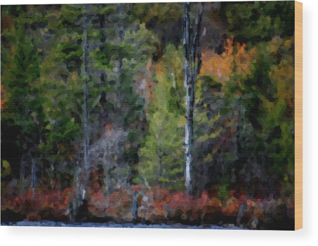 Digital Photograph Wood Print featuring the photograph Lakeside In The Autumn by David Lane