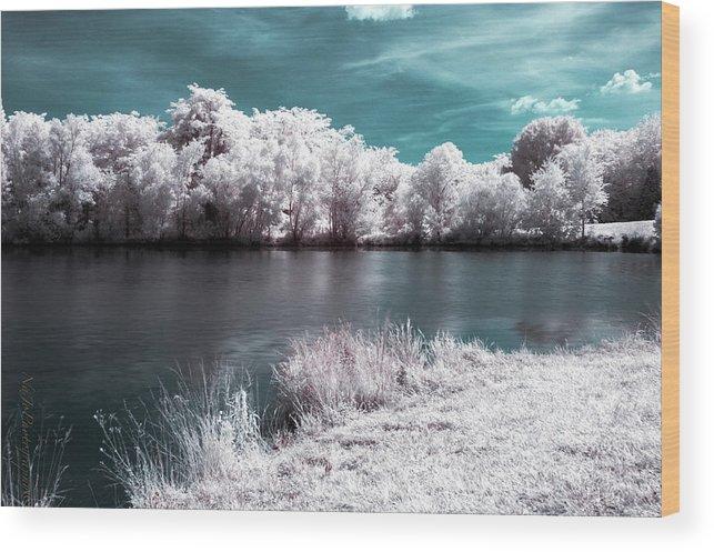 Lakeside Wood Print featuring the photograph Lakeside4 by Natasha Rawls