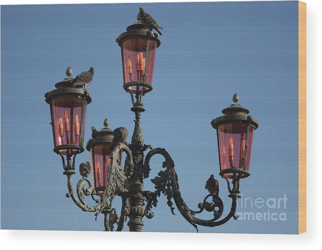 Venice Wood Print featuring the photograph Lamp Post In Venice With Pigeons by Michael Henderson