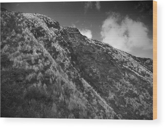 Mountain Wood Print featuring the photograph Landscape by Wes Shinn