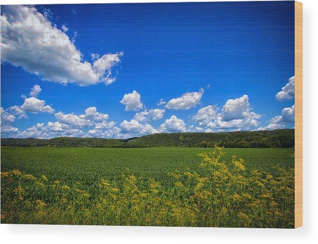 Field Wood Print featuring the photograph Lanesboro Fields by Bill Tiepelman