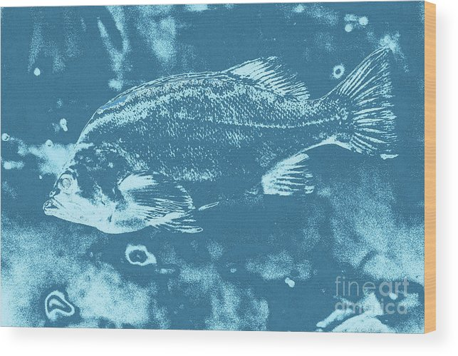 Largemouth Bass 8 Wood Print featuring the digital art Largemouth Bass 8 by Chris Taggart